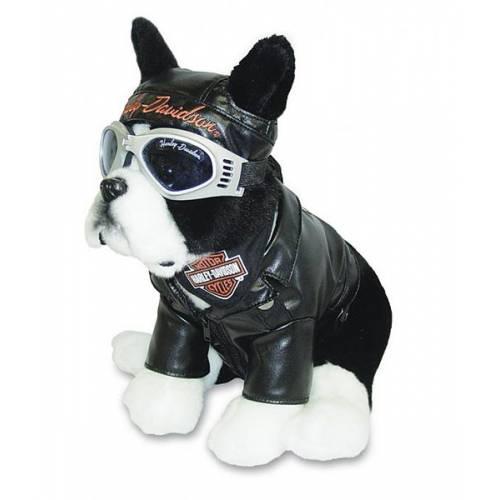 Peluche Boston Terrier, bouledogue biker, ? cm, Harley-Davidson 20284