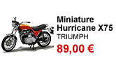 Miniature Hurricane X75 echelle 1/12 Triumph