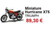 Miniature Hurricane X75 echelle 1/12 Triumph