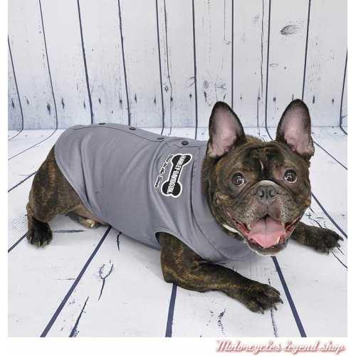 Chemise pour chien Harley-Davidson, gris, visuel, H2100-H-GYW