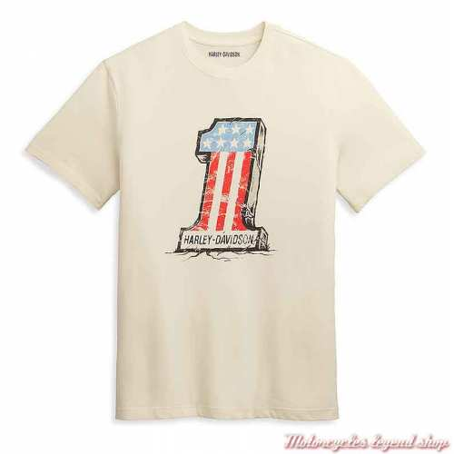 Tee-shirt Cracked One Graphic Harley-Davidson homme