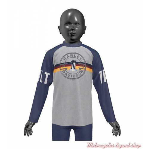 Tee-shirt Harley-Davidson enfant, gris, bleu, manches longues raglan, coton, 1083127, 1093127