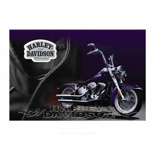 Pin's H-D + carte postale, moto, féminin, enveloppe, Harley-Davidson 181133