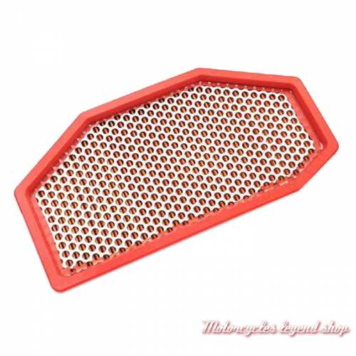 Filtre à air Triumph, pour Speed Triple, T2206602
