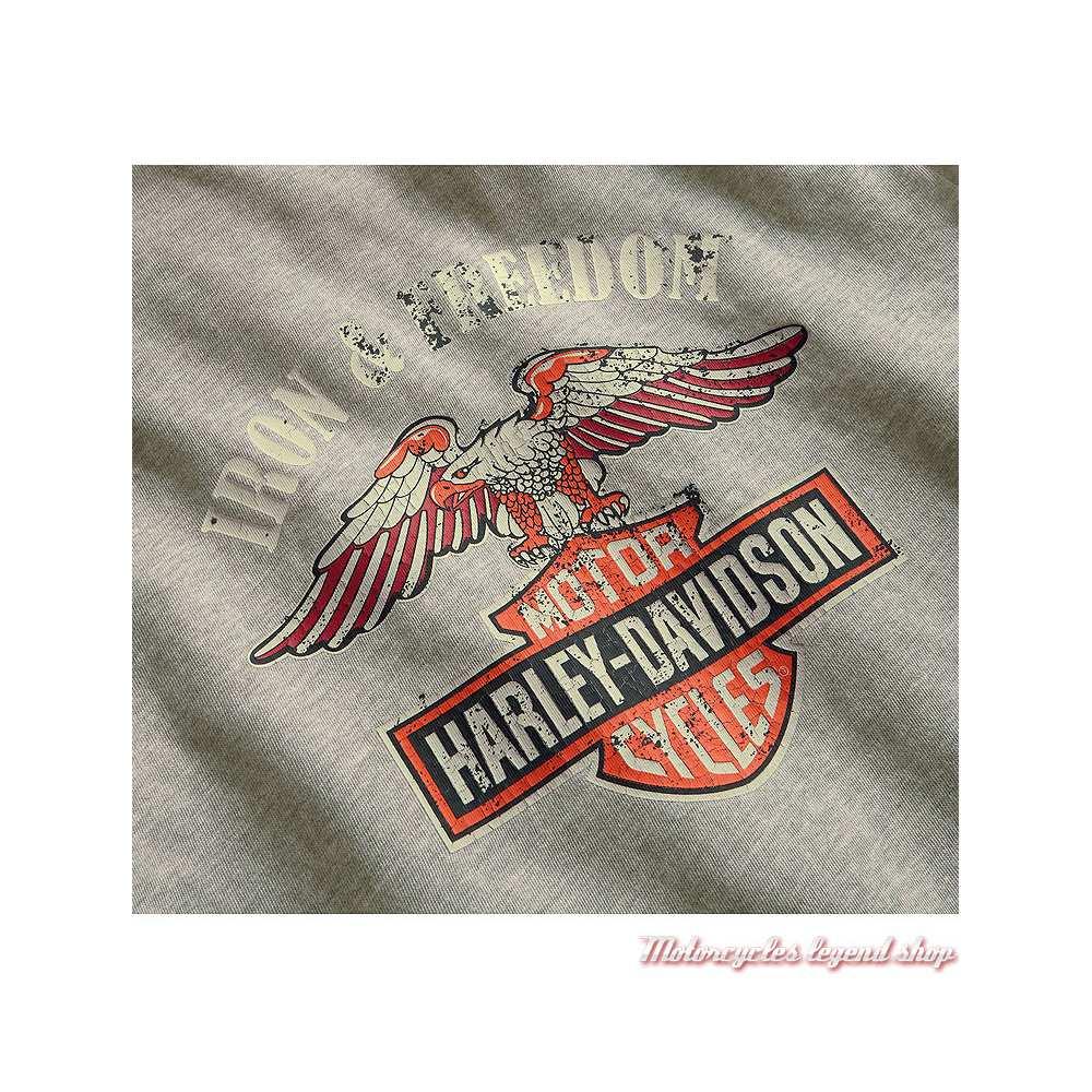 Tee-shirt Iron & Freedom Harley-Davidson femme, gris délavé, manches courtes, coton, graphisme dos, 96893-19VW