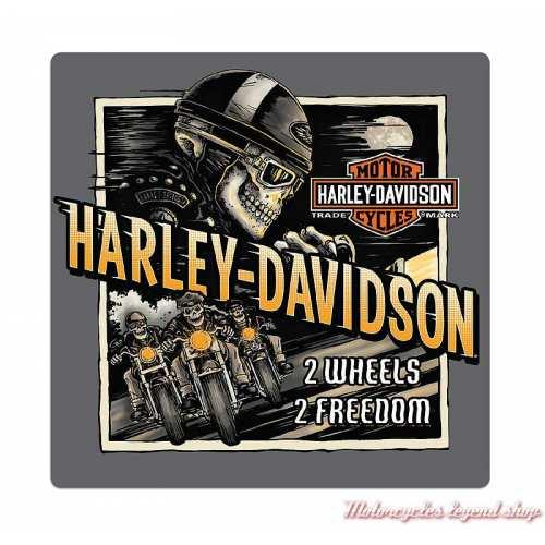 Plaque métal Skull Road Rage Harley-Davidson, Ande Rooney 2011321