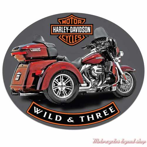 Plaque métal Wild & Three Harley-Davidson, Ande Roney 2011341